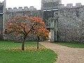 Framlingham Castle - geograph.org.uk - 1760291.jpg