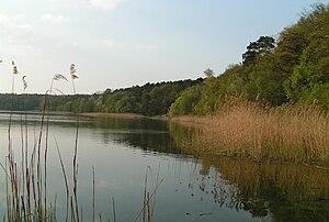 Wielkopolski National Park - Góreckie Lake at the Park