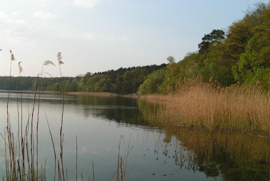 Wielkopolski National Park