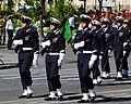 GAN Charles-de-Gaulle flag Bastille Day 2008.jpg