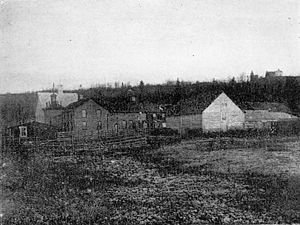 Cornelius Gallagher (Canadian politician) - Gallagher-Hull meat processing plant in 1903