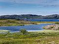 Gappatjavri-Norwegen-P1270865-PS.jpg