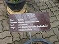 Gardenology.org-IMG 7909 qsbg11mar.jpg