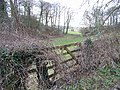 Gate and small valley, Broad Chalke - geograph.org.uk - 666941.jpg