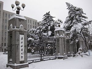 Northeast Forestry University - The main entrance of NEFU, the school gate since established