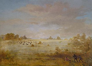 Elk Grazing on an Autumn Prairie