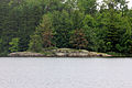 Gfp-minnesota-voyaguers-national-park-shore-of-kabetogama-on-a-rainy-day.jpg