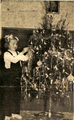 Girl and Christmas tree in Kumanovo 1962.png