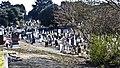 Glasnevin Cemetery (4512365129).jpg
