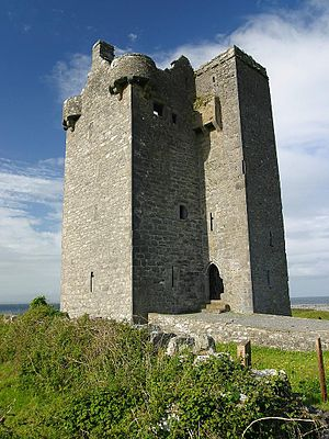 L-plan castle - Gleninagh Castle, County Clare, Ireland