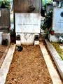 Grab von Stefan und Zoe Wassilko-Serecki in Grinzing.png