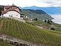 Grandvaux, Bourg-en-Lavaux, Switzerland - panoramio (9).jpg