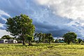 Green landscape with trees and wooden houses under heavy clouds at golden hour in Don Det Laos.jpg