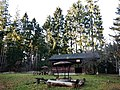 Grillplatz in der Nähe von Waldenbuch - panoramio.jpg