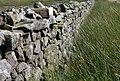 Grouse Grit box - geograph.org.uk - 506365.jpg