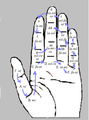 GuidonianHand.PNG