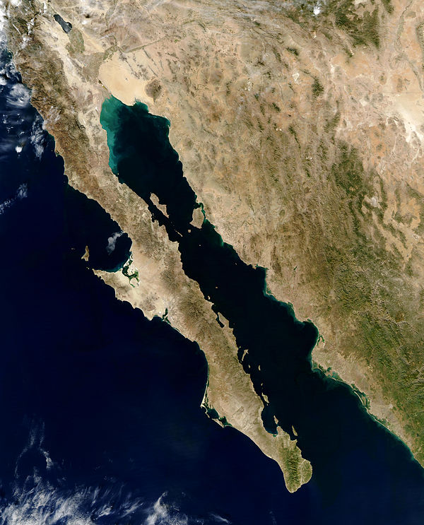 Satellite picture of the gulf Gulf of California.jpg