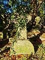 Hampstead Additional Burial Ground 20201026 083739 (50531774653).jpg