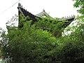 Hanbin, Ankang, Shaanxi, China - panoramio - monicker (19).jpg