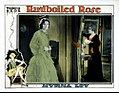 Hardboiled Rose lobby card.jpg