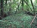 Harlaxton ironstone railway, reversing point at Swine Hill - geograph.org.uk - 1466455.jpg