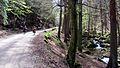 Harz ilsetal per rad untere ilsefälle ds wmc 28 04 2012.jpg