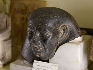Mentuemhat - Head from a statue of an old man, probably Mentuemhat. Black granite. 25th Dynasty. From Thebes (Karnak), Egypt. The Petrie Museum of Egyptian Archaeology, London