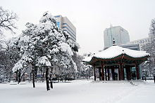 Heavy snow in Seoul, 4 Jan. 2010 - Covered the park with snow.jpg