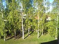 Hemsta, Gävle, Sweden - panoramio.jpg