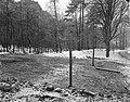 Het bebosde terrein aan de Heyenoordseweg waar het Dorp zal verrijzen bij Arnh, Bestanddeelnr 914-7425.jpg