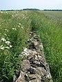 Hidden Wall - geograph.org.uk - 463326.jpg