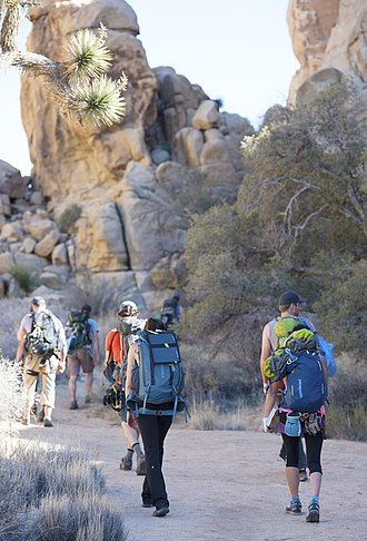 approach to climbing area Hiking to a Climbing Route at Joshua Tree National Park.jpg
