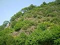 Himmerich Steilhang (3).jpg
