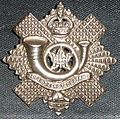 Hli badge1.JPG