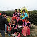 Hmong's girls.jpg