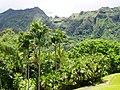 Ho'omaluhia Botanical Garden - mountain view.JPG