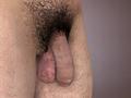 Human Penis.png