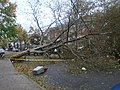 Hurricane Sandy Effects - E21st Brooklyn.JPG