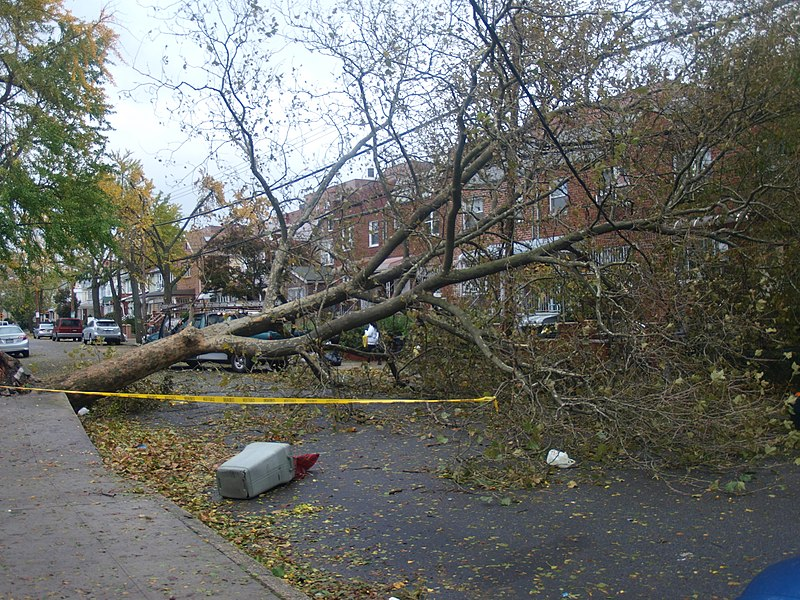 File:Hurricane Sandy Effects - E21st Brooklyn.JPG