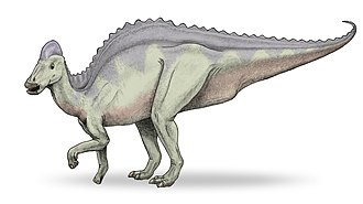 1913 in paleontology - Hypacrosaurus