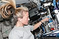 ISS-36 Karen Nyberg with the Capillary Flow Experiment.jpg