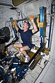 ISS Expedition 30 Burbank exercises.jpg