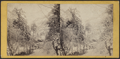 Ice and snow scene in the Catskills, by E. & H.T. Anthony (Firm) 6.png