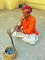 India-6786 - Flickr - archer10 (Dennis).jpg