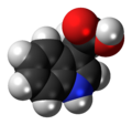 Indole-3-acetic acid 3D spacefill.png