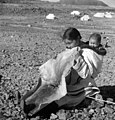 "Inuit woman ""Josie"" chewing sealskin to soften it for making kamiits (boots), Kinngait, Nunavut (31497043966).jpg"