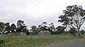 Invergowrie NSW.JPG