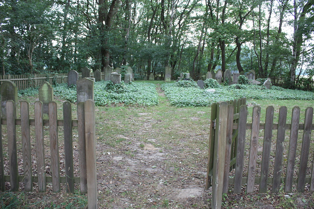 Jüdischer Friedhof Twistringen 2010 012.JPG