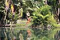 JBRJ Lago Frei Leandro Deusa Thetis 02.jpg
