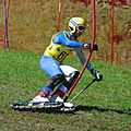 Jacopo Facchin World Cup Slalom Faistenau 2010.jpg
